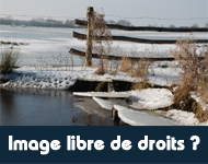 503-image1-fr1265104367.jpg