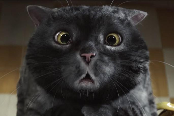 """Mog le chat, héros du conte de Noël """"Mog's Christmas Calamity"""" réalisé par Sainsbury's"""
